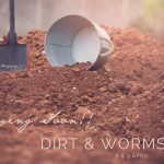 Dirt&Worms2016_1_lowres